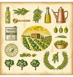 Vintage colorful olive harvest set vector image vector image