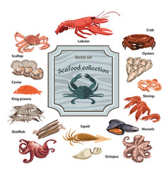 colorful hand drawn seafood icons set vector image