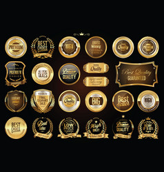 Luxury retro badges gold and silver collection 1 vector