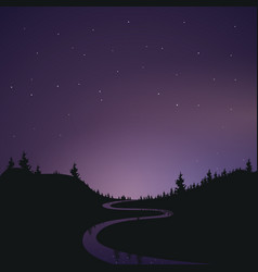 landscape the starry night sky banner the vector image