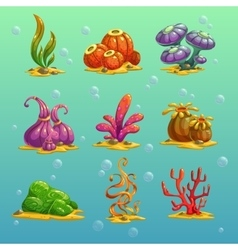 Algae vector