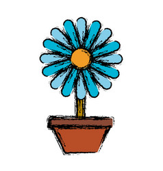 beautiful flower in a pot icon vector image