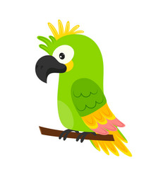 cartoon cute parrot isolated on white background vector image
