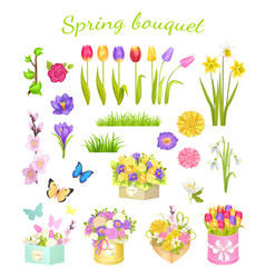 Concept of beautiful spring bouquet color flowers vector
