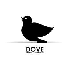 Dove design vector