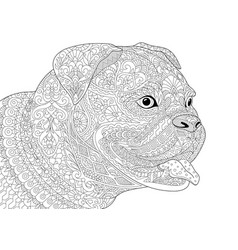 german boxer american bulldog adult coloring page vector image