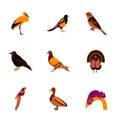 set of in flat style birds vector image