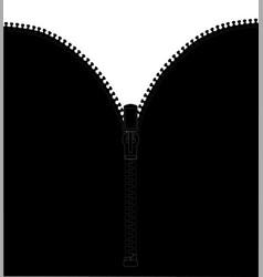 black zipper vector image