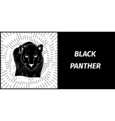 stylish logo black panther vector image vector image