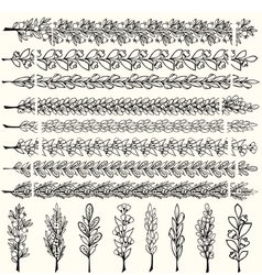 Hand drawn floral pattern borders vector image vector image