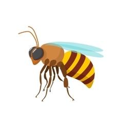 Bee cartoon icon vector image