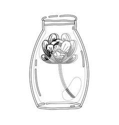 contour flower inside jar with nature botany vector image