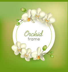Orchid round frame green background vector