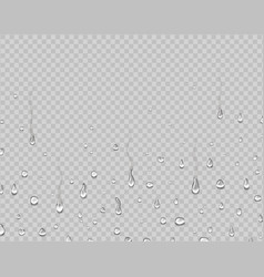 realistic water droplets on glass rain drops vector image