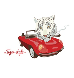white tiger style red car vector image