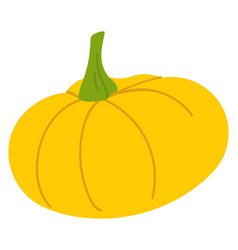 yellow pumpkin isolated autumn vegetable icon vector image