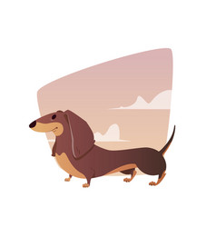 A vivid of the dachshund vector