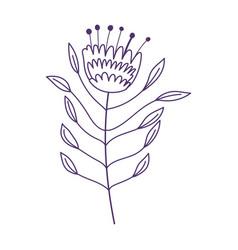 Flower leaf stem botanical nature decoration vector