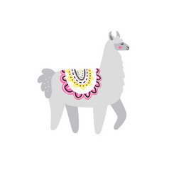 Gray lama vector