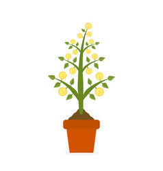 growing money tree with gold coins in ceramic pot vector image