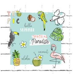 Summer cartoon doodle hand drawn tropical vector