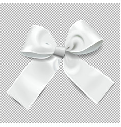 transparent background with silver bow holiday vector image