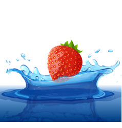 water splash with berry and reflection effect red vector image