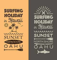 Surfing holiday hawaii vector image