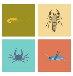 Assembly flat shrimp lobster crab vector