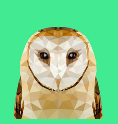 low poly owl vector image