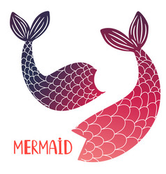mermaid tails isolated on white background vector image
