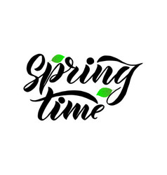 phrase spring time with green leaves vector image