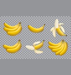 set realistic bananas 3d icons vector image