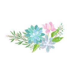 Succulent echeveria floral arrangements set vector