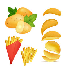 snacks or chips pictures vector image vector image