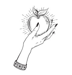 apple in female hand isolated hand drawn line art vector image