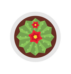 Blooming cactus with two flowers flat isolated vector