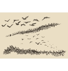 Hand drawn landscape flying birds forest vintage vector