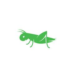 Logo grasshopper cricket insect logo vector