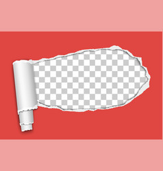 Oblong snatched hole in red sheet paper vector