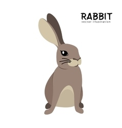 Rabbit isolated hand drawing vector image