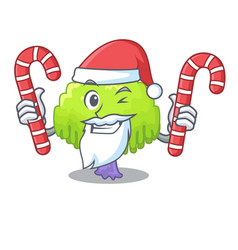 Santa with candy willow tree branch for frame vector