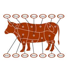 cow scheme vector image