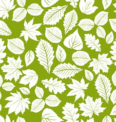 Different leaves seamless pattern natural endless vector image