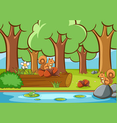 scene with squirrels in forest vector image