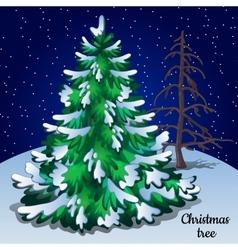 Greeting card with Christmas tree closeup vector image