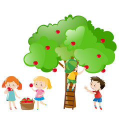 Children picking apples from tree vector