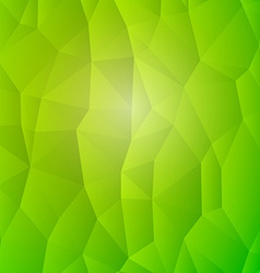 Abstract Nature Detail Structure Green Triangles vector