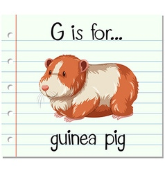 Flashcard letter G is for guinea pig vector