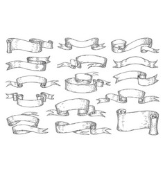 hand drawn ribbons vintage sketch elements vector image